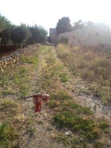 Balsignano: vialone a ridosso delle mura
